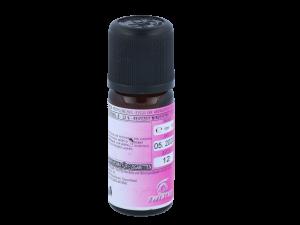 Twisted - Twisted Aroma - Batnut - 10ml